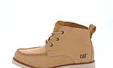 CAT - Davis Beige