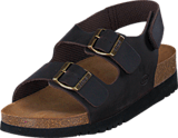 Scholl - Giava Dark Brown
