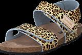 Kavat - Bomhus XC Leopard