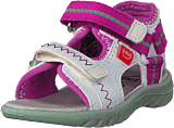 Pax - Surfa White/purple